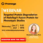 Recording Webinar Targeted Protein Degradation of HaloTag® Fusion Protein for Phenotypic Studies
