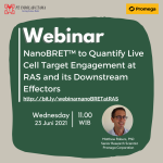 Recording Webinar NanoBRET™ to Quantify Live Cell Target Engagement at RAS and its Downstream Effectors